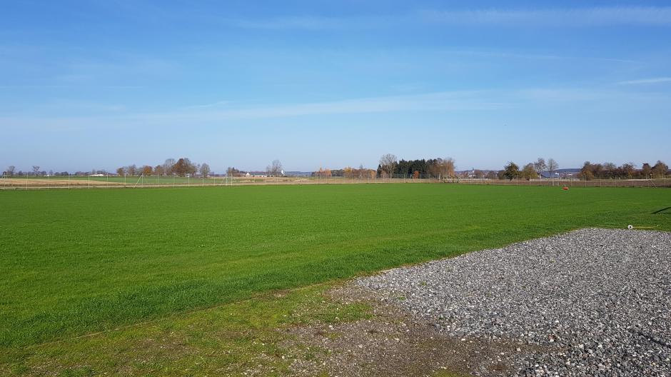 Read more about the article Sanierung der Trainingsplätze